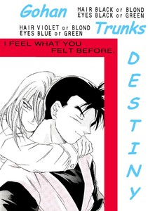 Cover Back-Scanlated  Destiny-ibDBZ Reloaded-b The Yaoi Saga -i-Thumb157